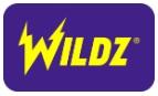 wildz-casino.jpg